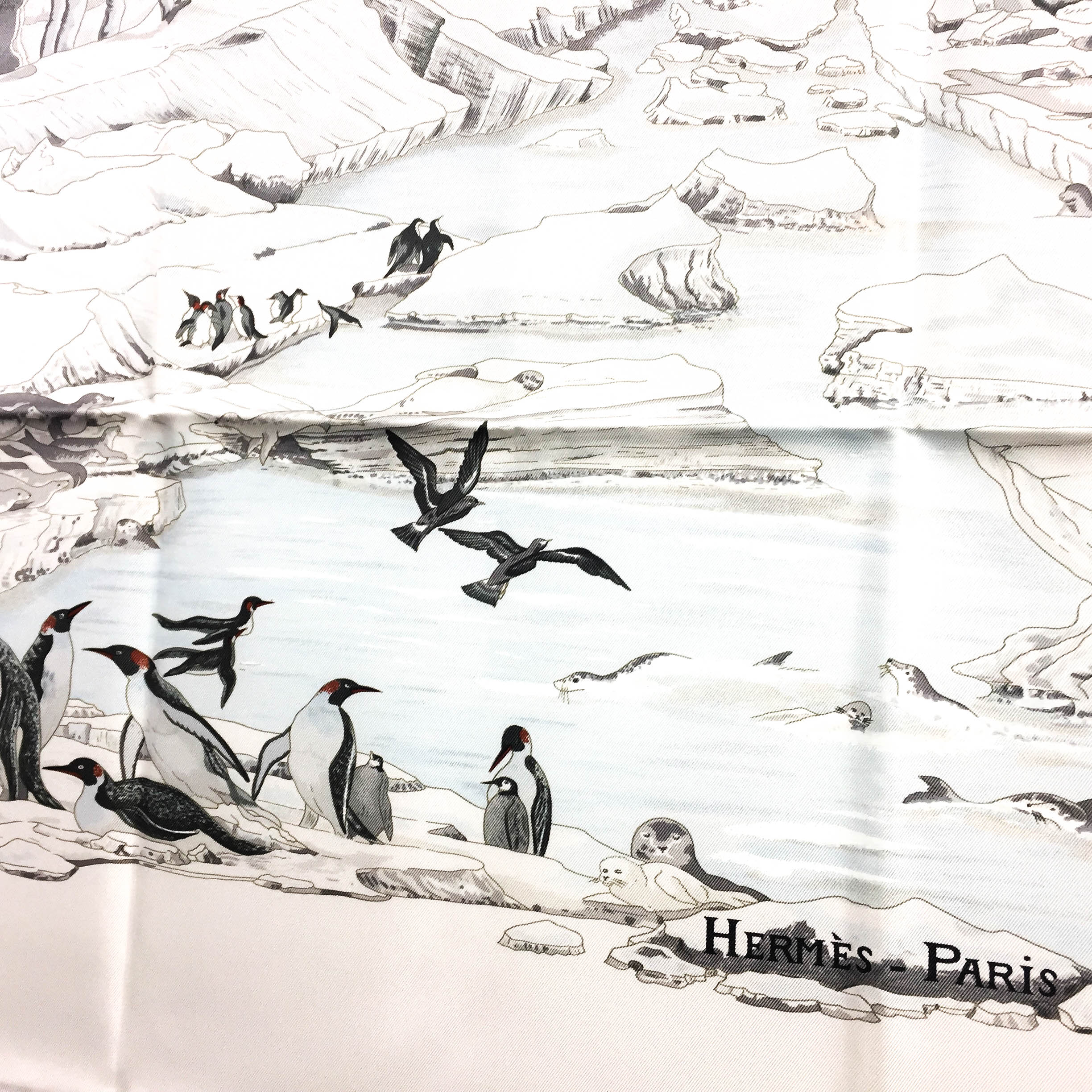 Hommage a l'Explorateur Sir Ernest Shackleton HERMES Grail Silk Scarf_-9